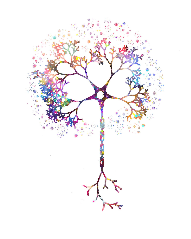 Neuron Watercolor Neurologist T Nerve Cell Neurology