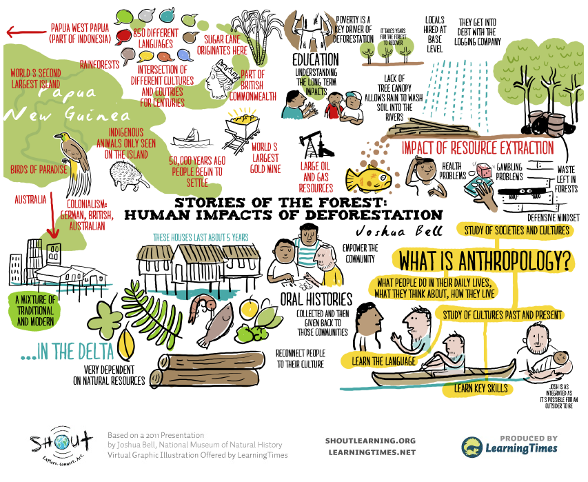 Stories of the Forest: Human Impacts of Deforestation | Education ...