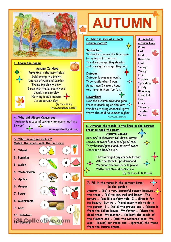 Autumn Изучать английский, Чтение, Английская грамматика