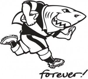 Kzn Sharks Rugby Shark Logo Rugby Logo Rugby
