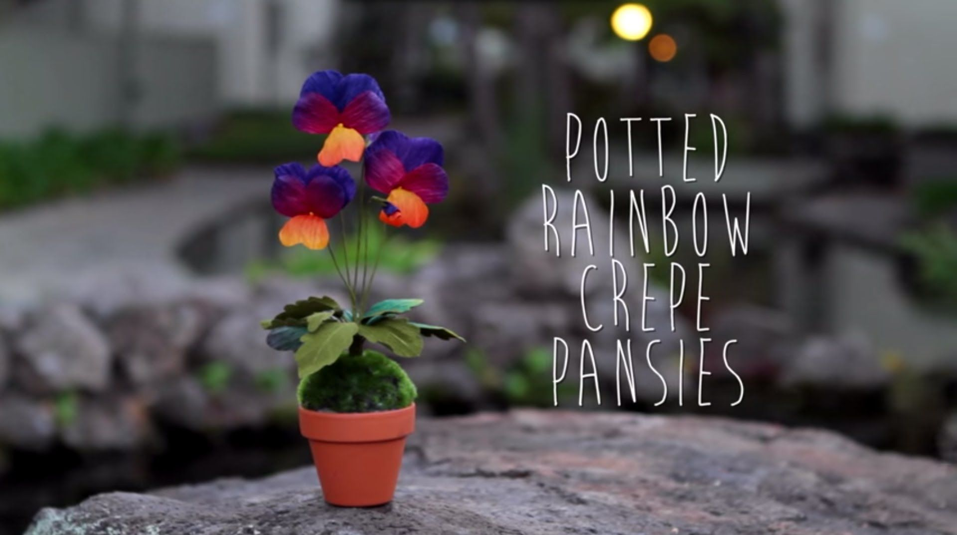 Crepe Paper Pansy Tutorial Youtube Crafts Pinterest Crepe
