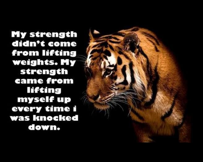 0010 strength life quote like Goal Setting Quotes Stay