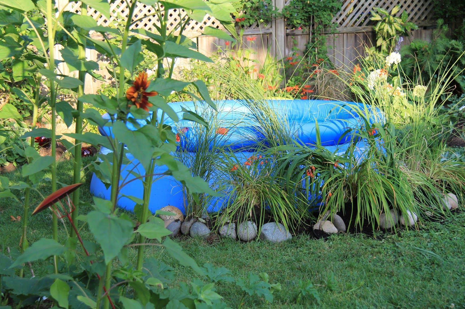 Small temporary pool with round shaped pool and vinyl materials pool frame also plant decorating - Marvelous backyard decoration with various shaped pool ideas ...