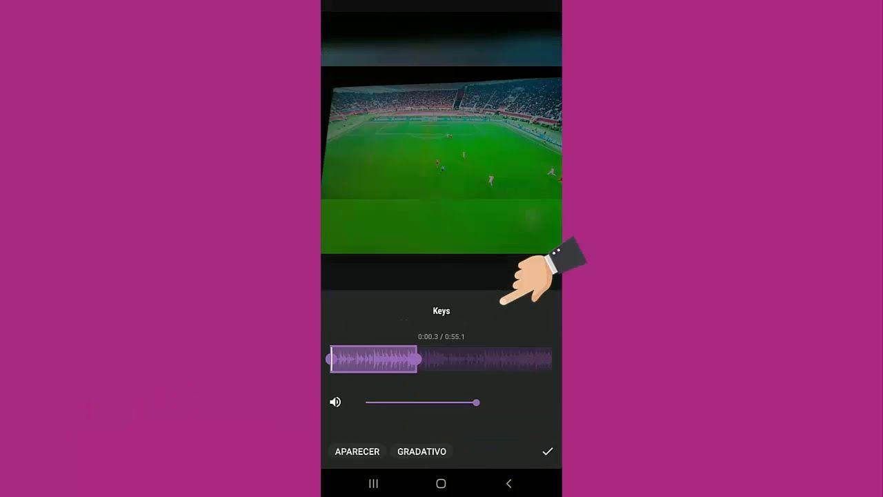 Como Substituir O Audio Do Video No Inshot Com Imagens Aplicativos