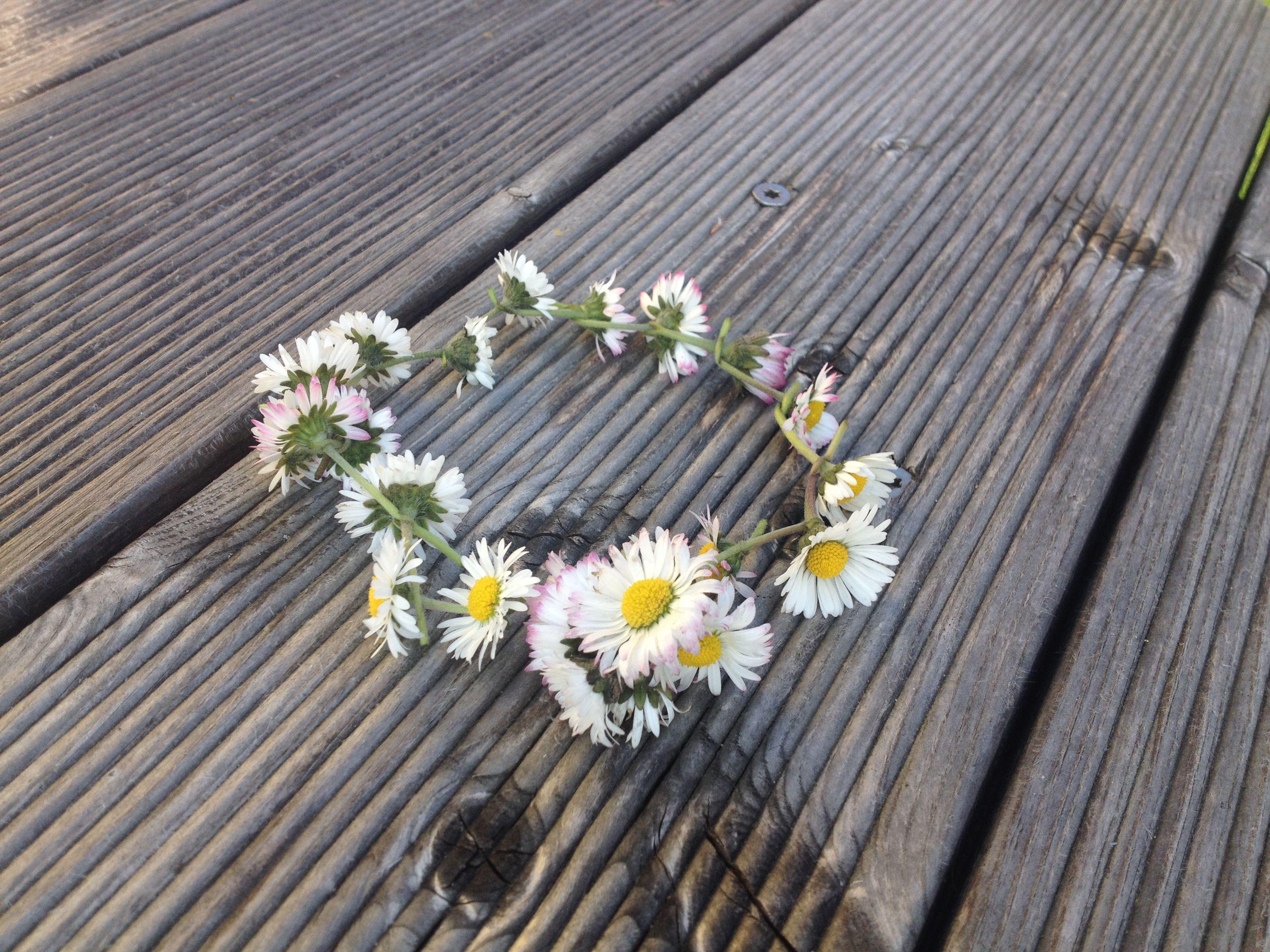 Einfach ein paar schöne Gänseblümchen suchen und aneinander ketten... Dazu muss man nur in den Stiel mit dem Fingernagel ein Loch machen und dann den Stiel der nächsten Blume hinein stecken...