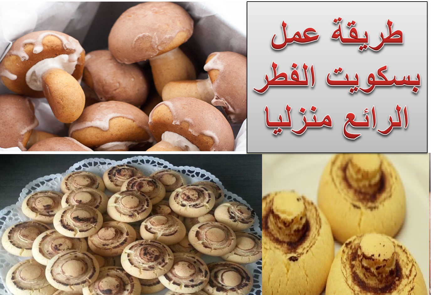 بسكــويت الفـــطر او المشــروم Mushroom Biscuits Stuffed Mushrooms Food Vegetables