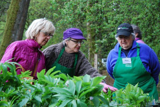 Arboretum Foundation @ Washington Park Arboretum in Seattle