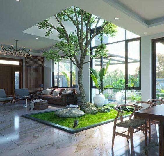 16 Indoor Garden Ideas You Will Fall For Contemporary