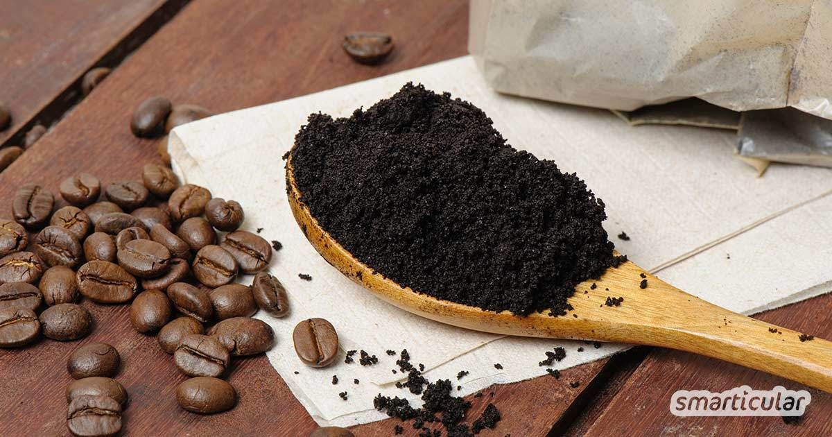 Photo of Use coffee grounds: 16 applications for household, bathroom and garden