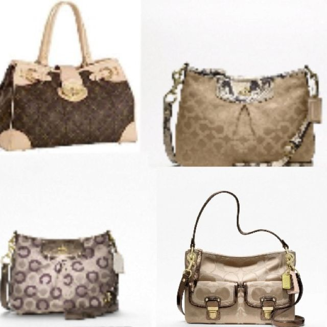 Louis Vuitton and Coach!Which one would you pick?