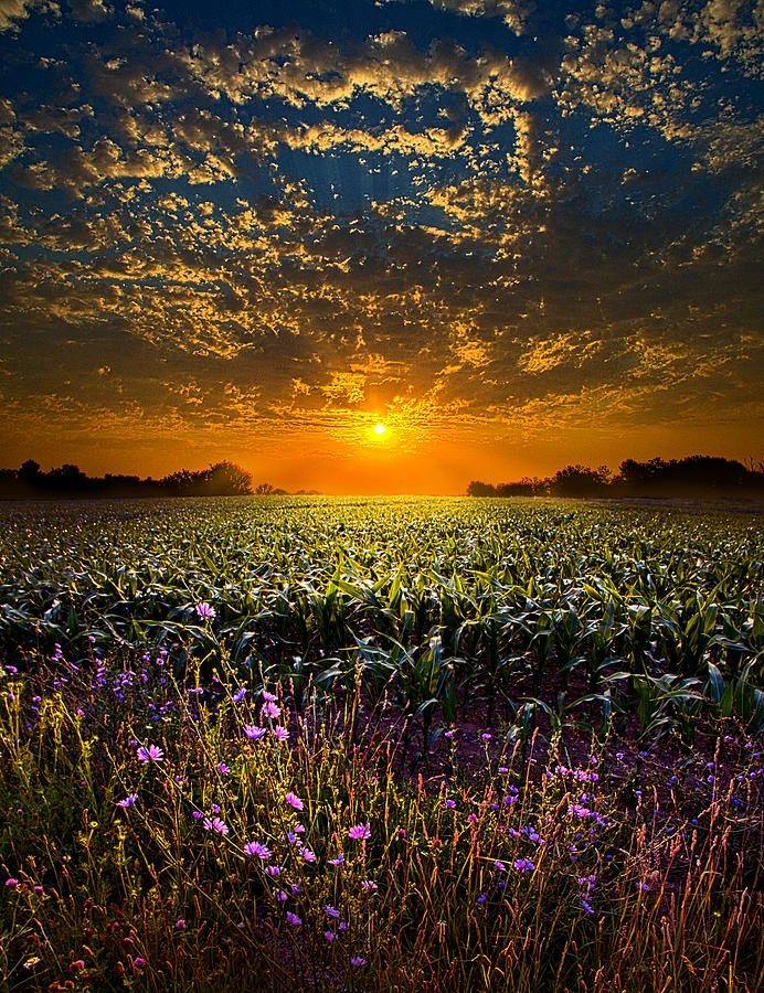 A New Day Nature Photography Scenery Beautiful Nature
