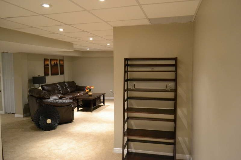 Explore Basement Ceiling Options And More!