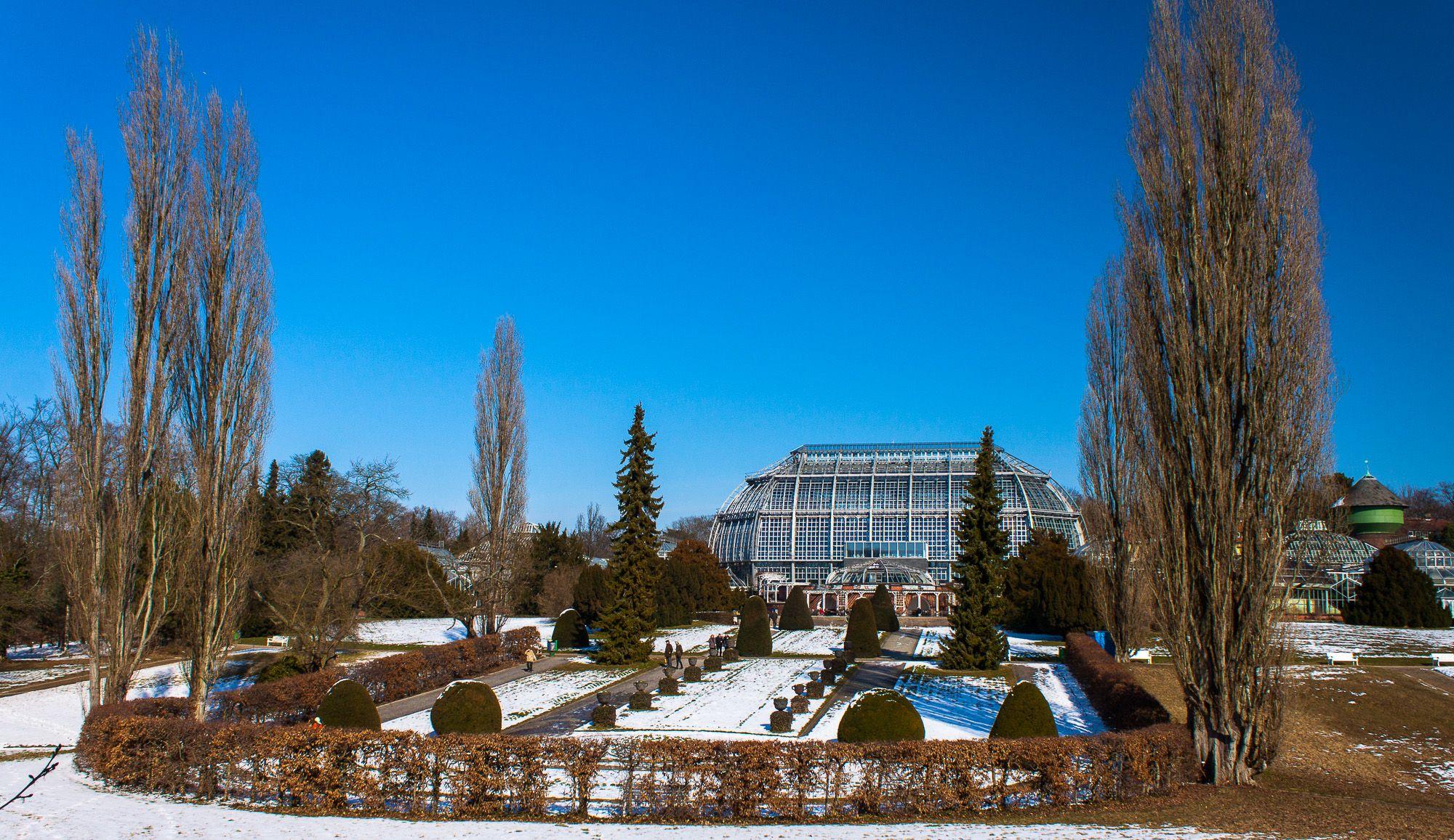 Botanical Garden Berlin Botanischer Garten Garten Fotograf