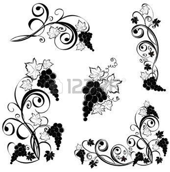Vite E Tralci Disegno.Tralcio Uva Grapevine Vino Elementi Di Design Illustrazioni