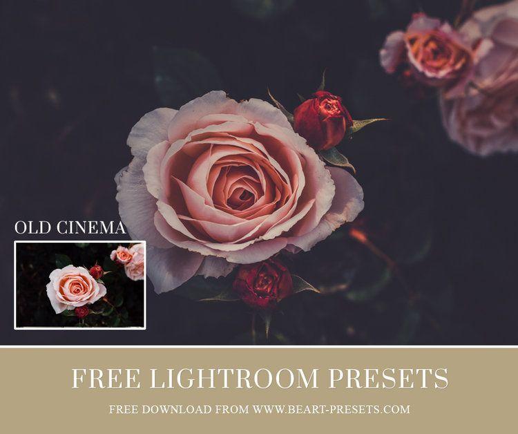Free Lightroom Presets | Presets | Photoshop presets