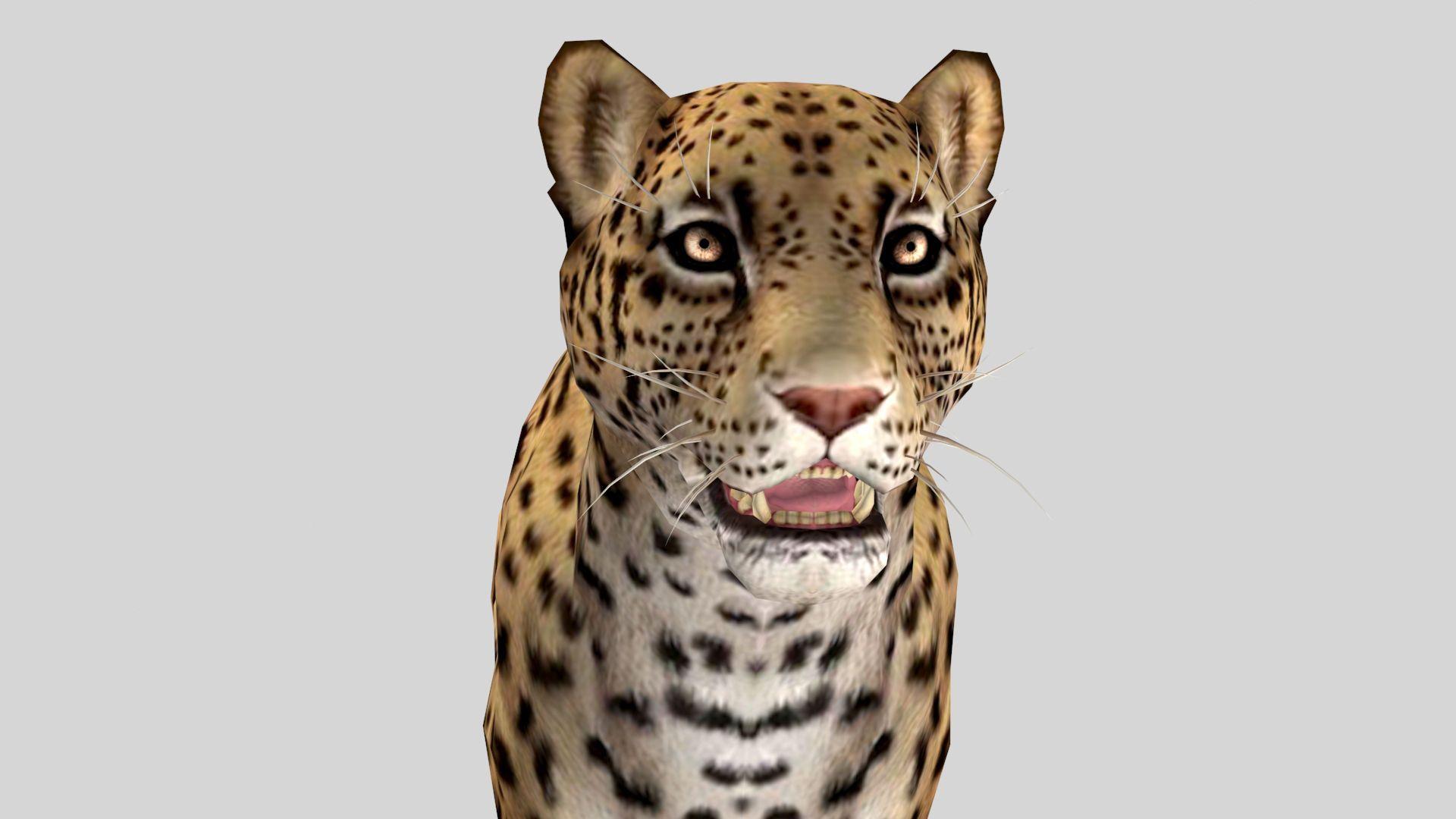 Jaguar 3D | 3D Models in 2019 | Jaguar, Animals, Low poly games