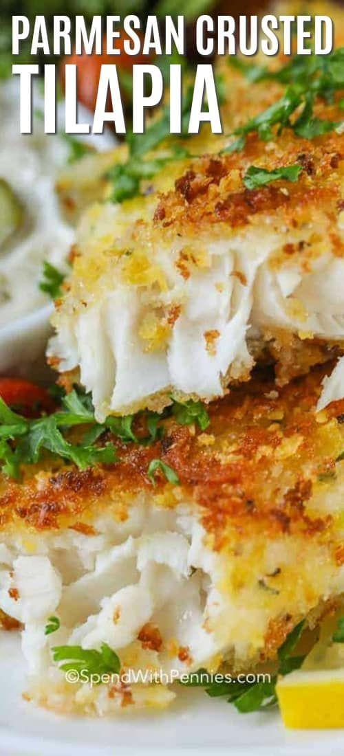 Parmesan Crusted Tilapia - Spend With Pennies