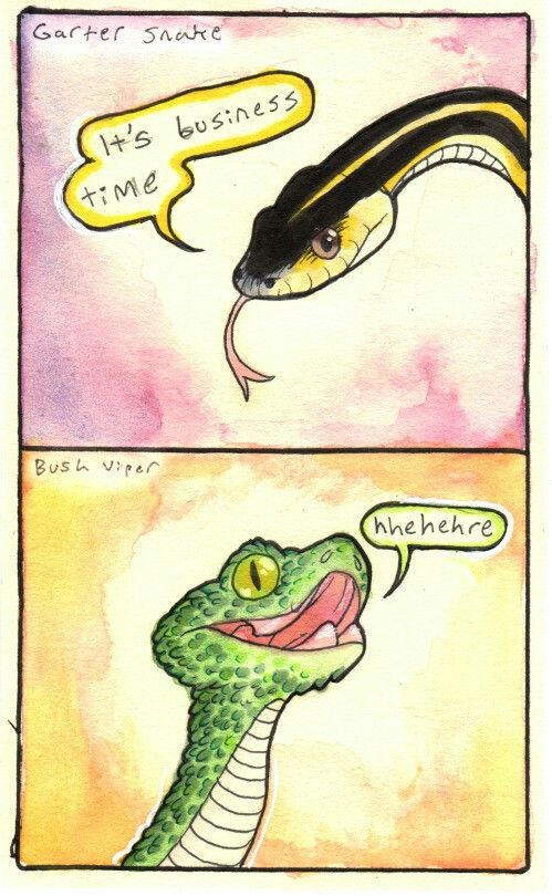How to Tick Off Texas Readers: Accidentally Confuse a ... |Milk Snake Humor