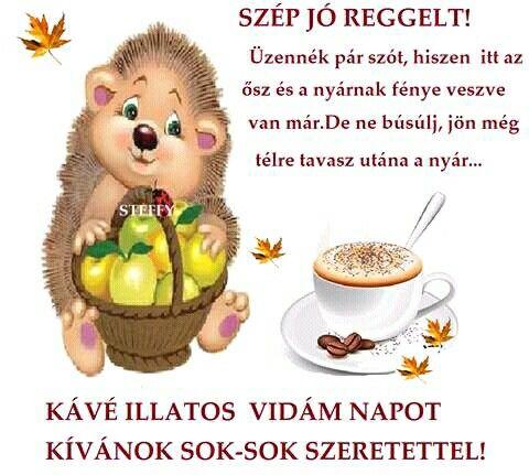 jó reggelt idézetek vicces Szép jó reggelt!   Jó reggelt, Reggeli, Idézetek