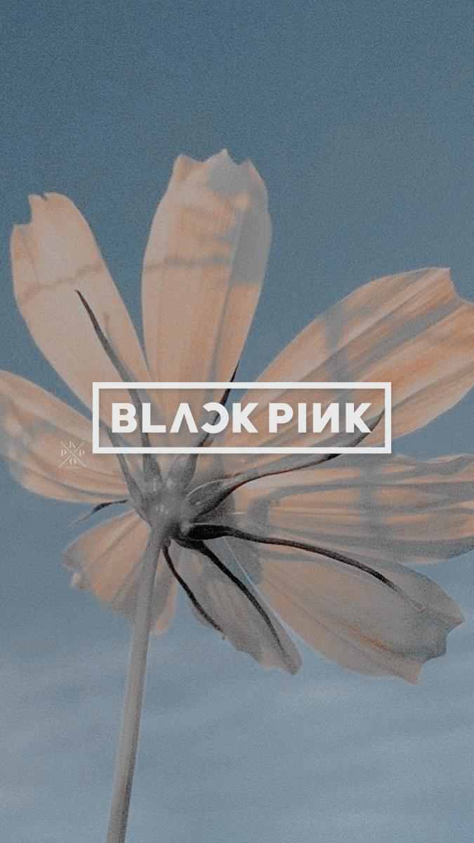 kpoplocks Blackpink, Logos, Pink