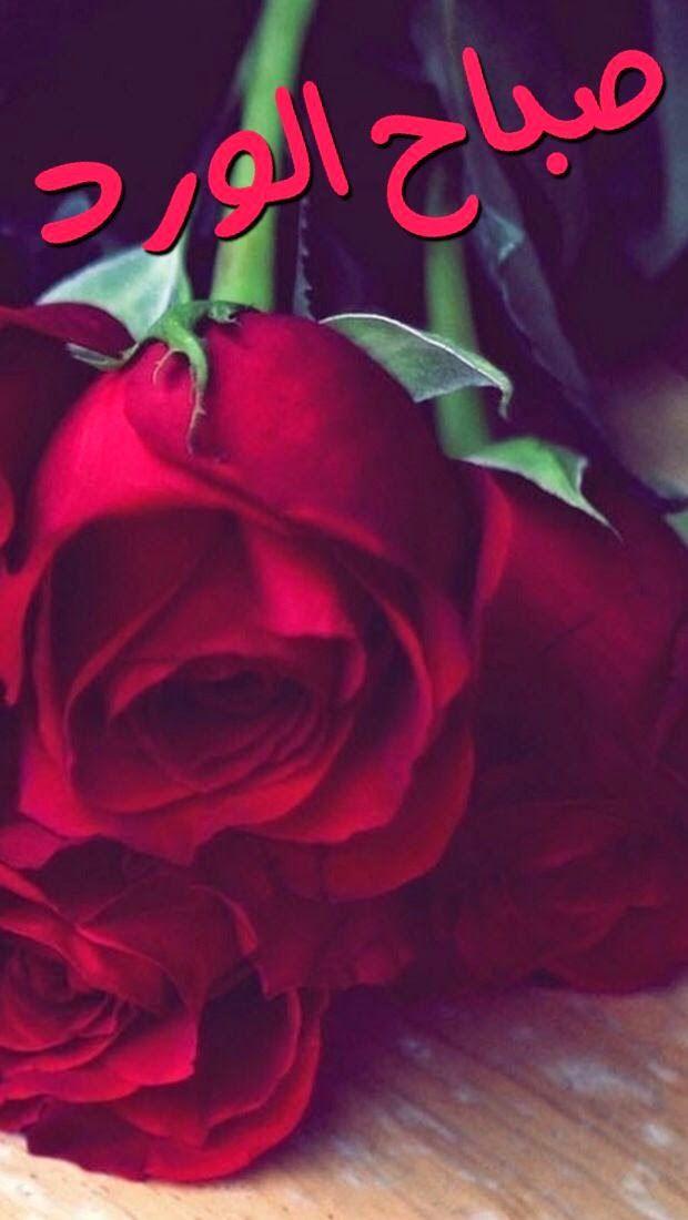 865479234 فيسبوك المدونة: صور صباحية جديدة مع أجمل كلمات الصباح | موقع أبونشمي ...