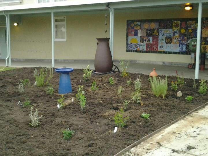 Native garden at School as a Garden; PEC! | Garden ideas | Pinterest ...