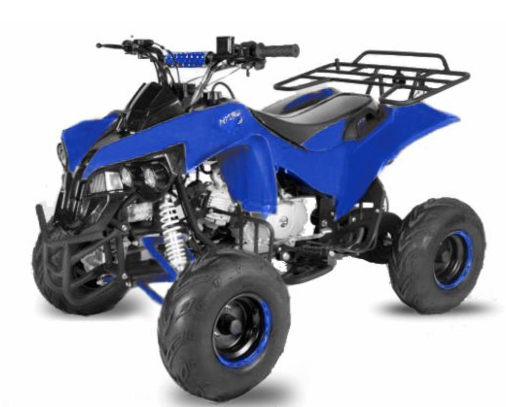 Quad Ado 125cc Automatique Warrior Rg 7 En 2020 Quad 125cc Quad Pour Enfant
