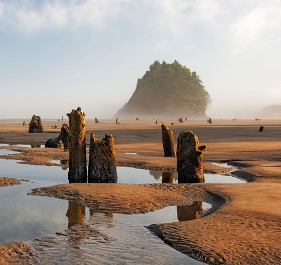 Oregon Coast's Most Surprising Places