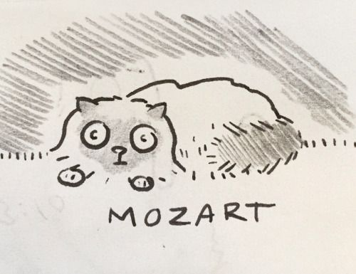 An illustrated portrait of the roommate's cat.