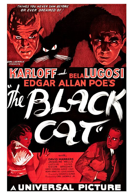 The Black Cat  Horror Movie Poster Print X  Vintage Movie