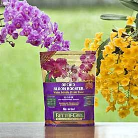 Orchid Better Bloom Plant Food Orchid Leaves Orchids Orchid Care