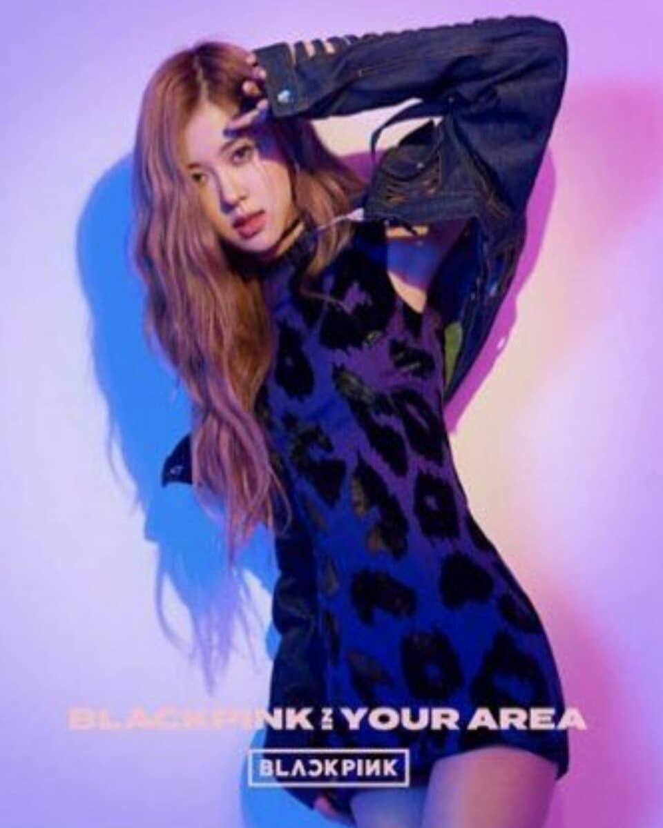 IN YOUR AREA JAPANESE ALBUM | ROSÉ VERSION | Goddesses in