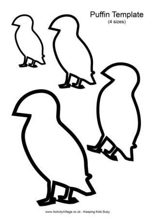 Puffin Template  Kids  Art    Template Bird Template