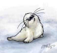 Risultati immagini per foca cucciolo bestiole adoravili nel