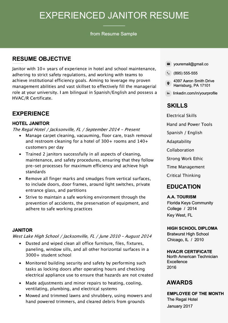 Future Career Path Professional Janitor Resume Sample Writing