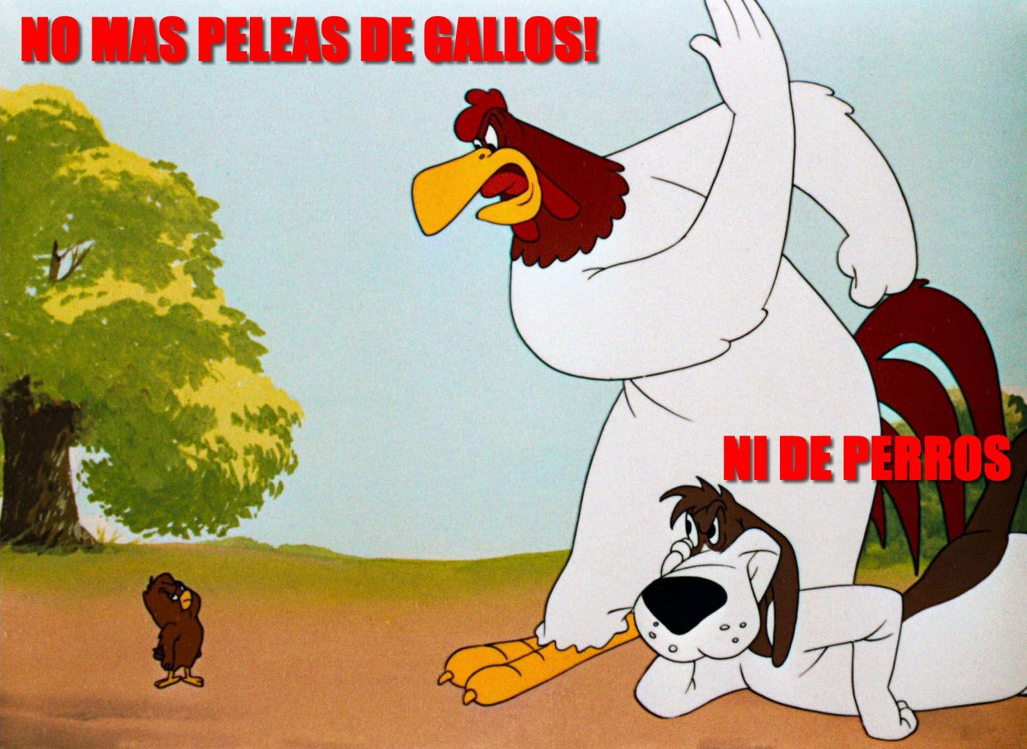 No Mas Peleas De Gallos