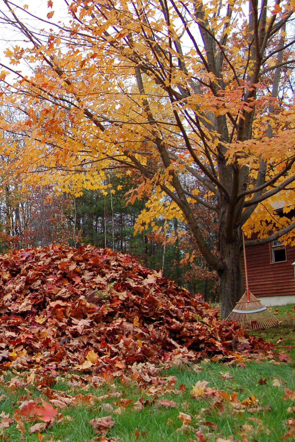 Preparing Your Home For The Holiday Season Gutters