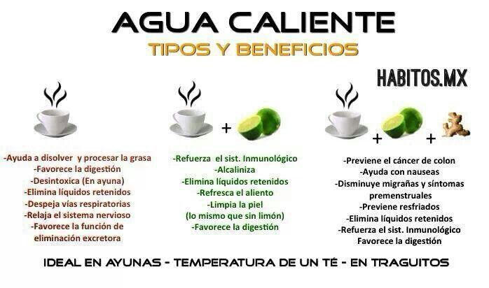 Agua caliente tipos y beneficios