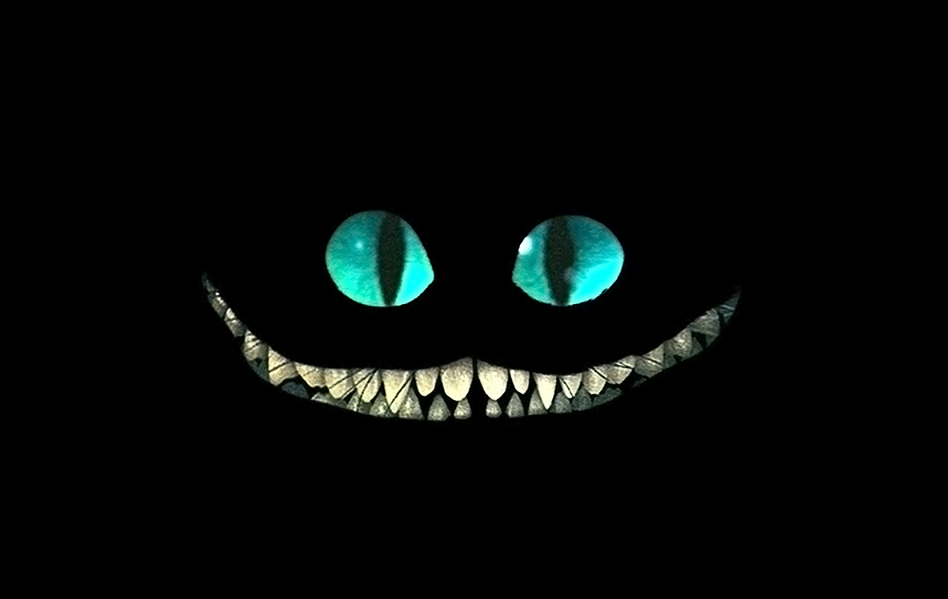 BCheshire Cat B Wallpaper 1900x1200