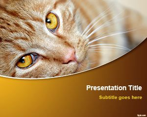 cat powerpoint template free powerpoint templates
