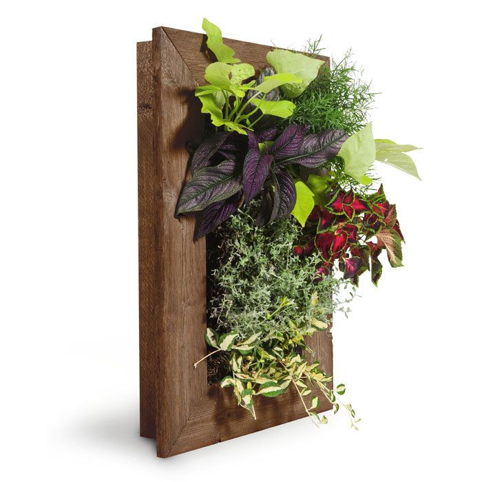 Bring Your Walls To Life With The GroVert Living Wall Planter By BrightGreen !