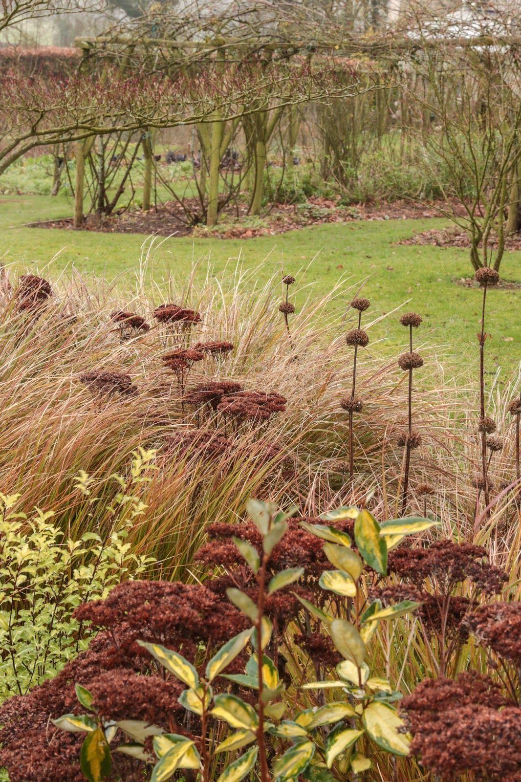 Glädjekällans Trädgårdsblogg #GardenBorders | Garden Borders ...
