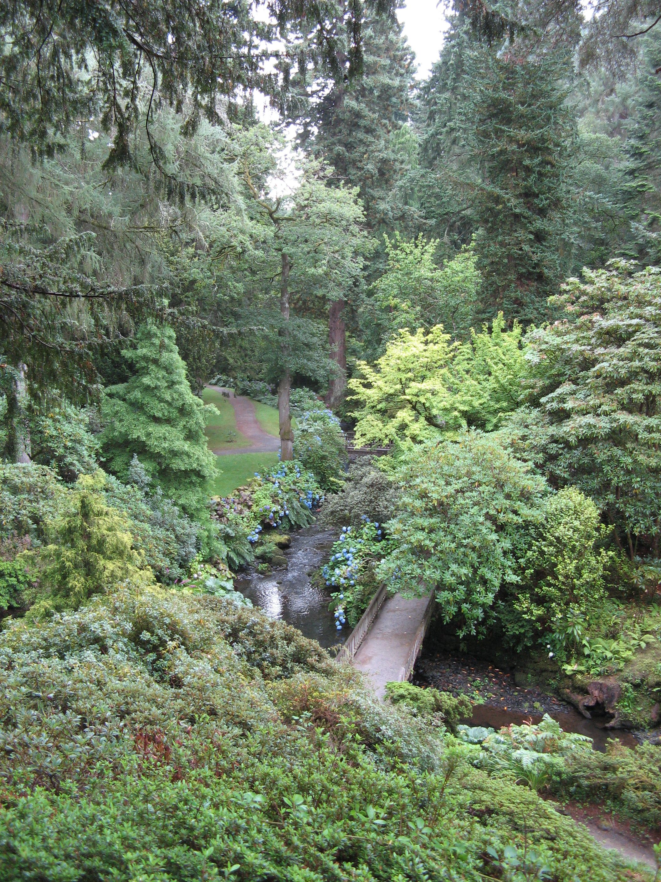 The steep wooded valley at Bodnant Gardens Natural
