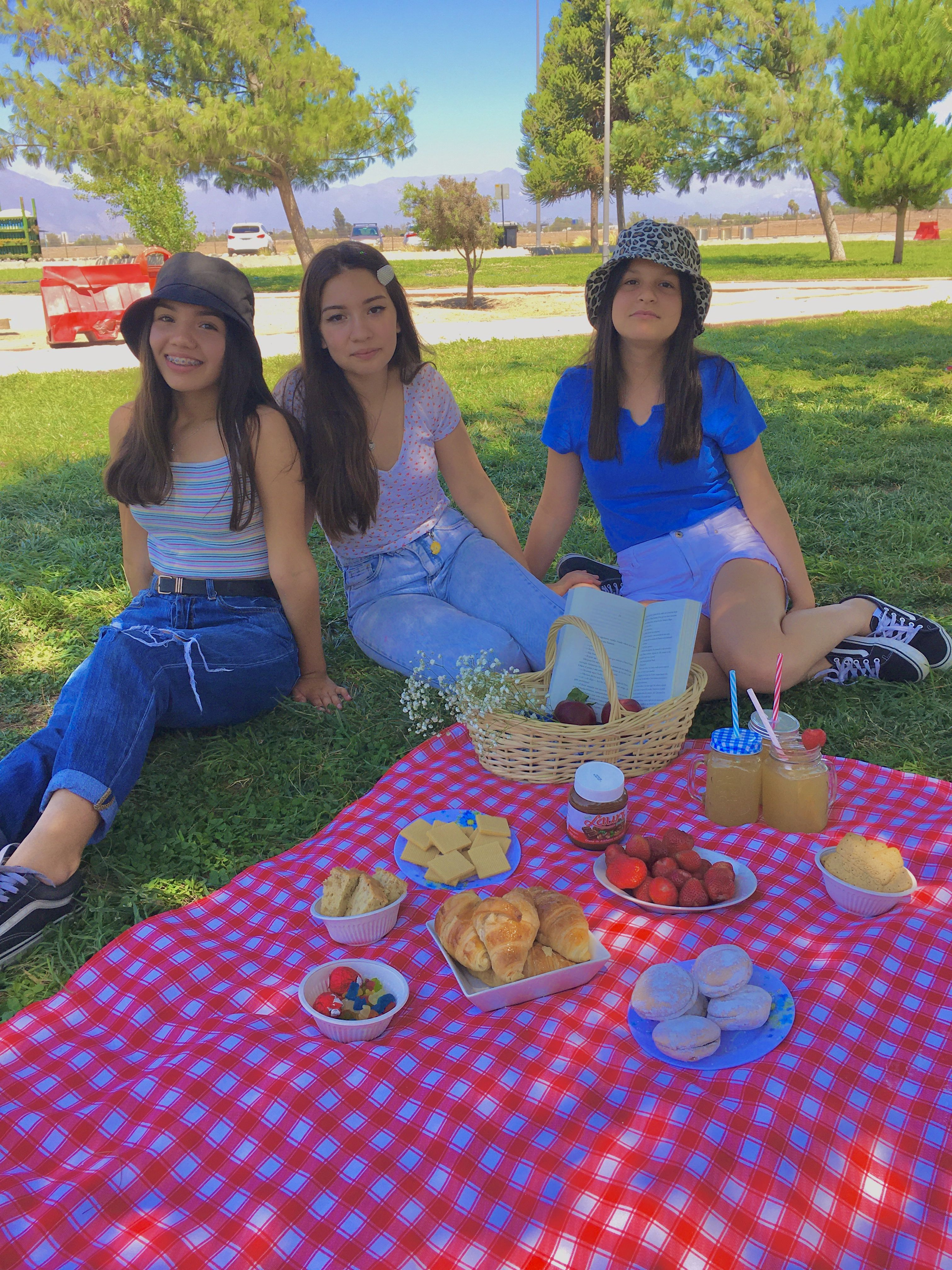 Aesthethic Picnic Aesthethic Friends Indie Y2k Picnic Chulo Nsksbd Picnic Outfits Indie Girl Indie Kids