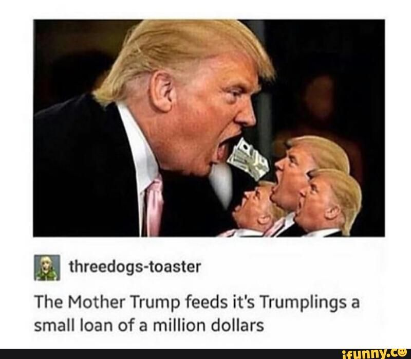 Donald Trump Funny Memes In Spanish : Donald trump meme google search lmfao pinterest