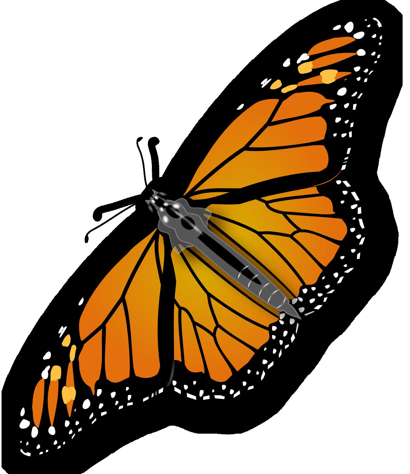 Butterfly Butterfly Clip Art Monarch Butterfly Clip Art