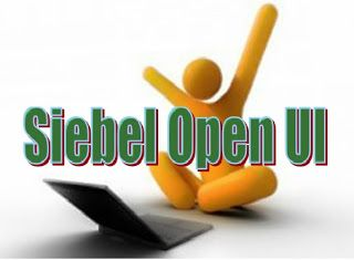 Pin On Do You Think Siebel Open Ui Developer Friendly Crm Application How Can You Measure It