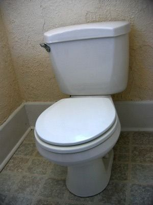 Easy Fix For A Wobbly Toilet Toilet Repair Plumbing Repair Toilet