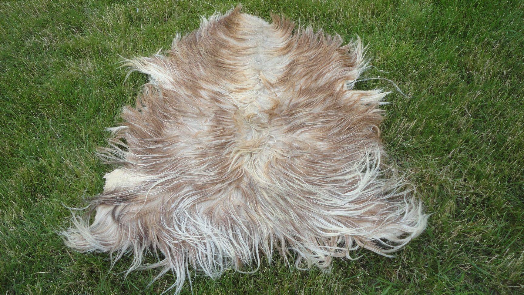 goat skin fur animal skin goat pelt real skin throw genuine skin hide leather carpet 4 3 x 3 7 ft fur rug long hair hide home decor