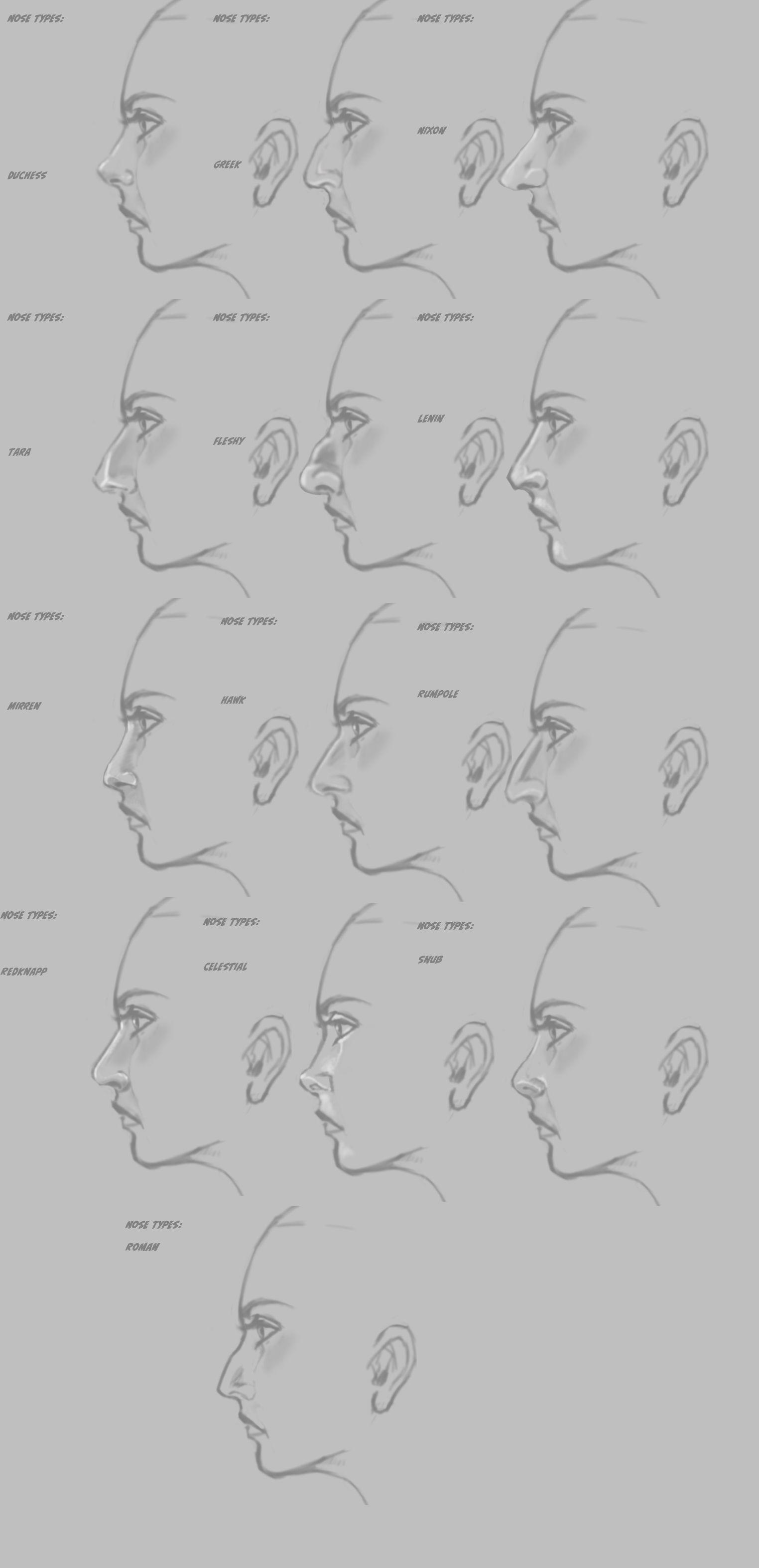 Drawing Noses Worksheet